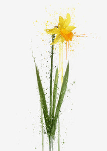 Flower Wall Art Print 'Daffodil'