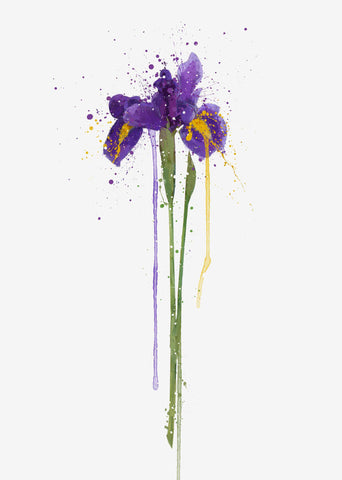 Flower Wall Art Print 'Iris'