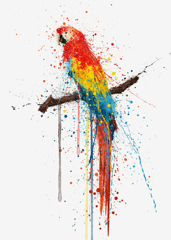 Scarlet Macaw Bird Wall Art print