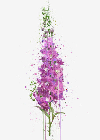 Flower Wall Art Print 'Delphiniums'