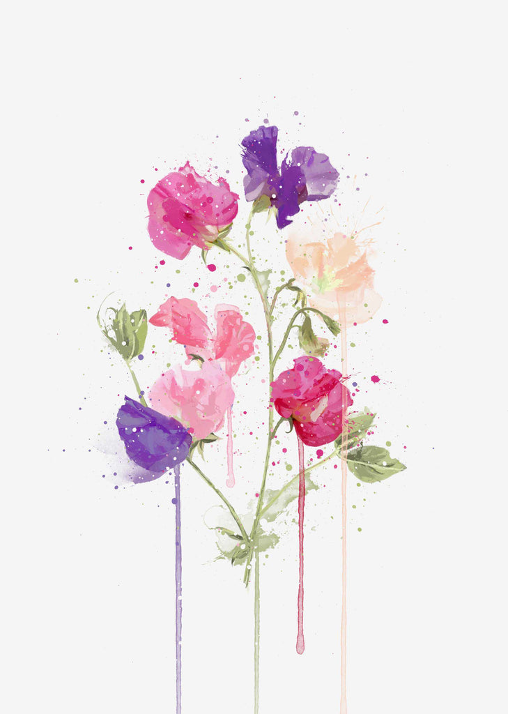 Flower Wall Art Print 'Sweet Pea'