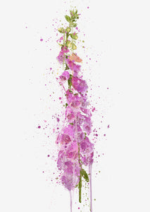 Flower Wall Art Print 'Foxglove'