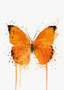 Butterfly Wall Art Print 'Tangerine Dream'