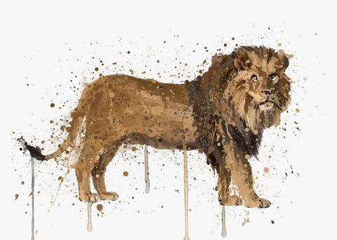 Lion Wall Art Print