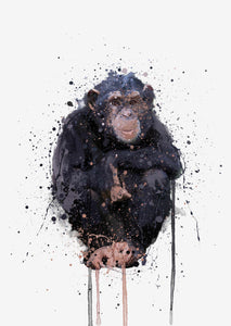 Monkey Wall Art Print 'Chimpanzee'
