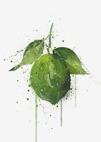Whole Lime Fruit Wall Art Print