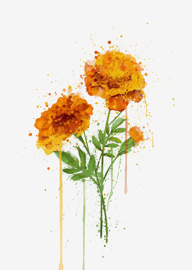 Flower Wall Art Print 'Marigold'