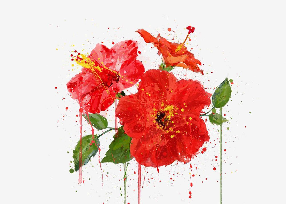 Flower Wall Art Print 'Red Hibiscus'