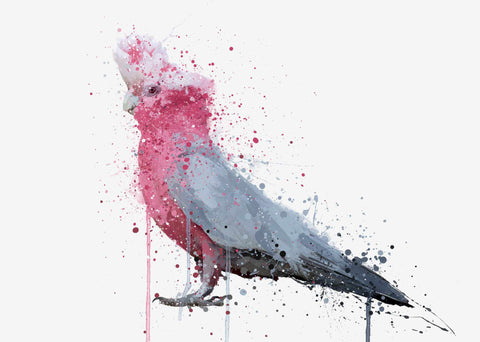 Cockatoo Wall Art Print 'Rose'