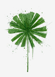 Botanical Wall Art Print 'Fan Palm'