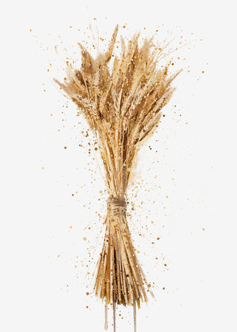 Botanical Wall Art Print 'Dried Wheat'