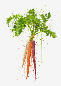 Rainbow Carrot Vegetable Wall Art Print