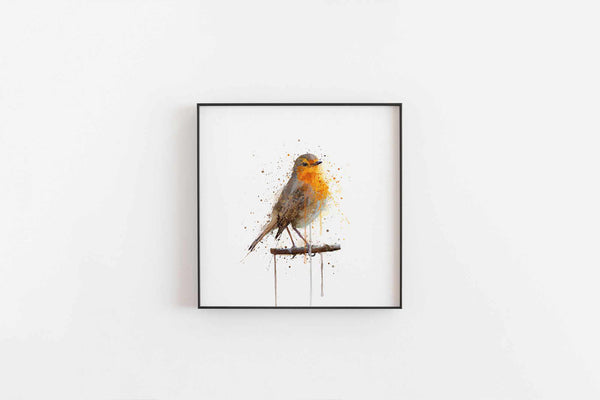 Robin Bird Wall Art Print