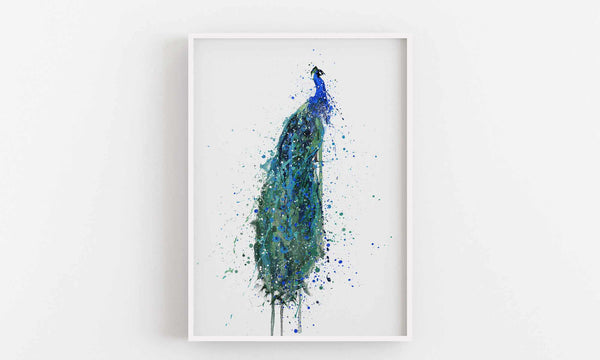 Peacock Wall Art Print