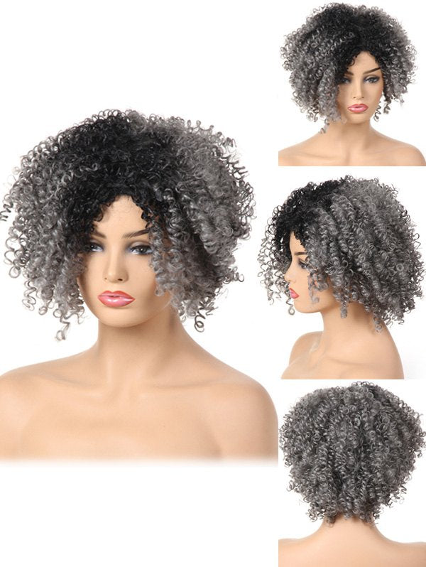 Short Side Bang Fluffy Curly Colormix Synthetic Wig