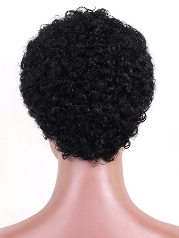 Short Afro Curly Pixie Human Hair Wig