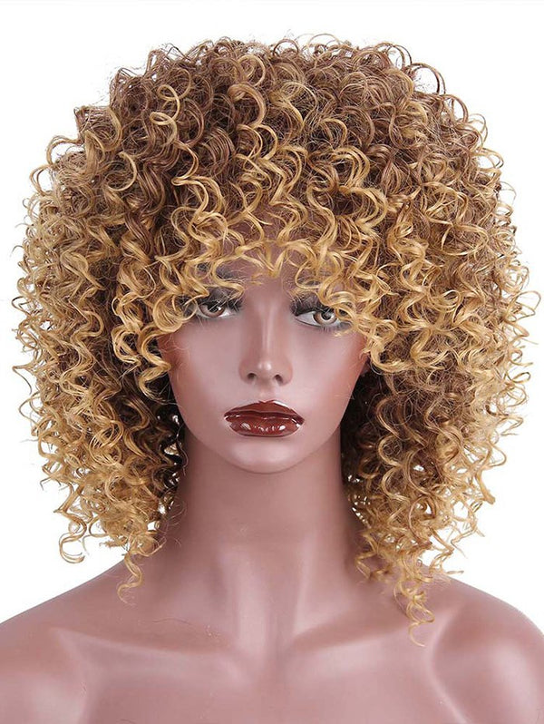 Medium Side Bang Shaggy Colormix Afro Kinky Curly Synthetic Wig