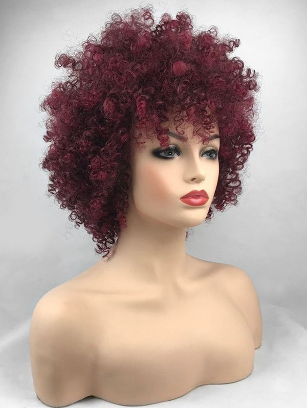 Short Inclined Bang Shaggy Afro Kinky Curly Synthetic Wig
