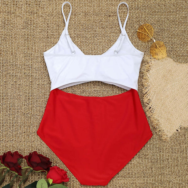 Cutout Two Tone Swimsuit