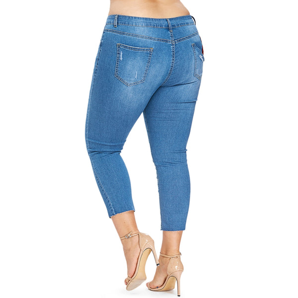 Plus Size Skinny Embroidered Patch Jeans