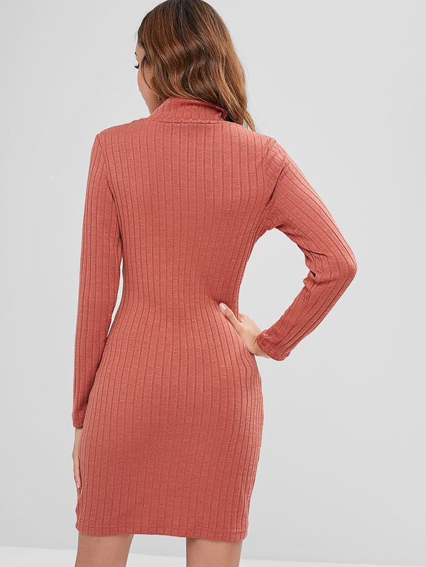 Buttoned High Neck Knit Fitted Dress