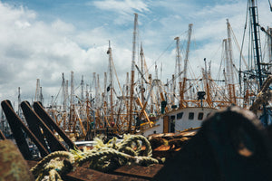 Shrimp Boat Fleet, Mexico //  Photo Print available in many sizes