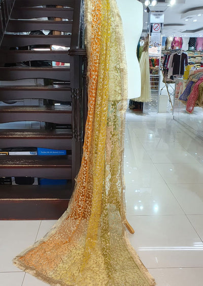 DXP02 C 3 Shaded Embroidered Net Duppatta - Memsaab Online