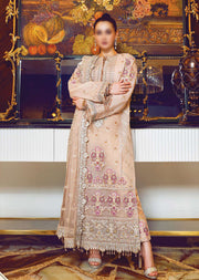 R20-D03 - Unstitched - Ritzier Intimate Wedding Collection by Rang Rasiya 2020 - Memsaab Online