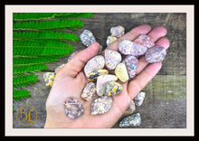 Load image into Gallery viewer, LEOPARDSKIN JASPER Gemstone 3 Piece Set Healing Leopardskin Jasper Crystal Kit Intention Stones Lithiotherapy Leopardskin Jasper 3 Stone Set