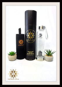 SHUNGITE Eau De Gemme Gemstone Elixir Water Bottle Shungite Gemstone Water Bottle Shungite