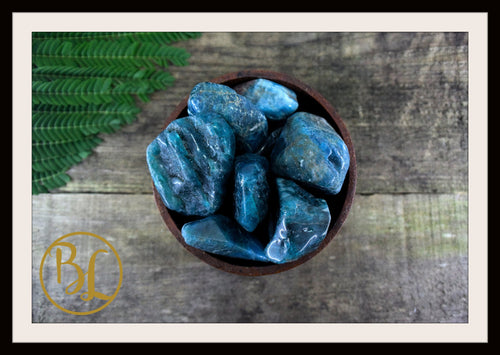 APATITE Gemstone 3 Piece Set Healing Apatite Crystals Healing Apatite Intention Lithiotherapy