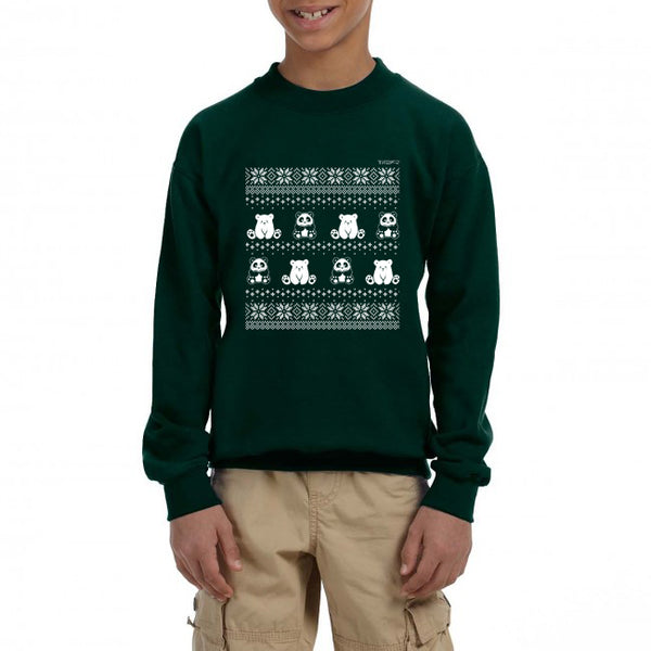 Winter Holiday Sweater design by P.M.B.Q. Studios. This design simulates a wintry knit pattern and features the Polo Cub character and his adorable panda friend. The design is white printed on a youth forest green crewneck sweatshirt and is worn by a boy model.