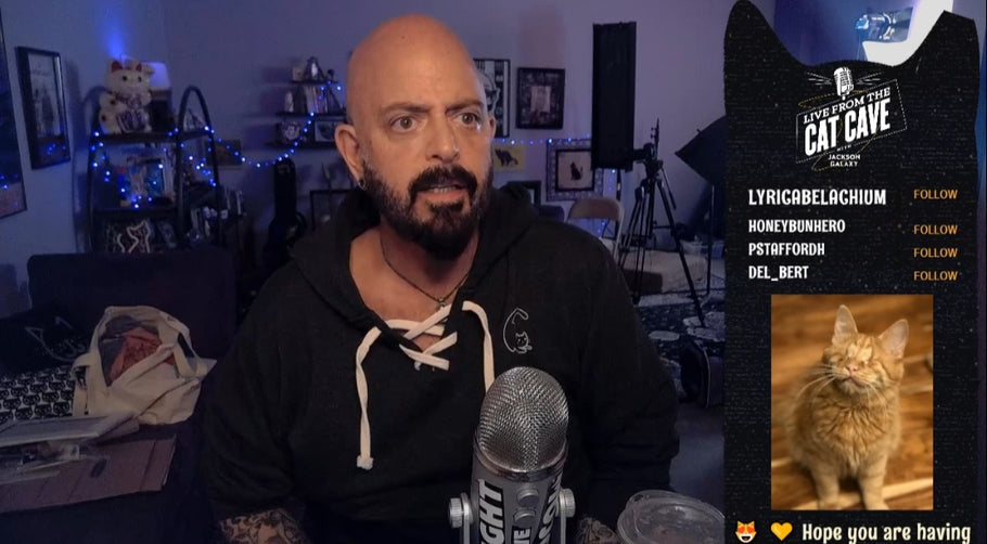 Where did Jackson Galaxy get that sweatshirt?