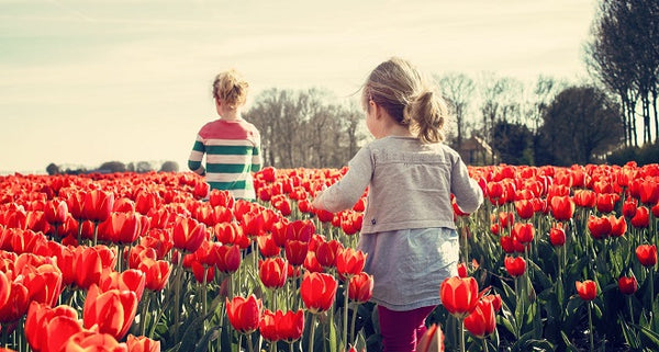 children walking through poppy fields