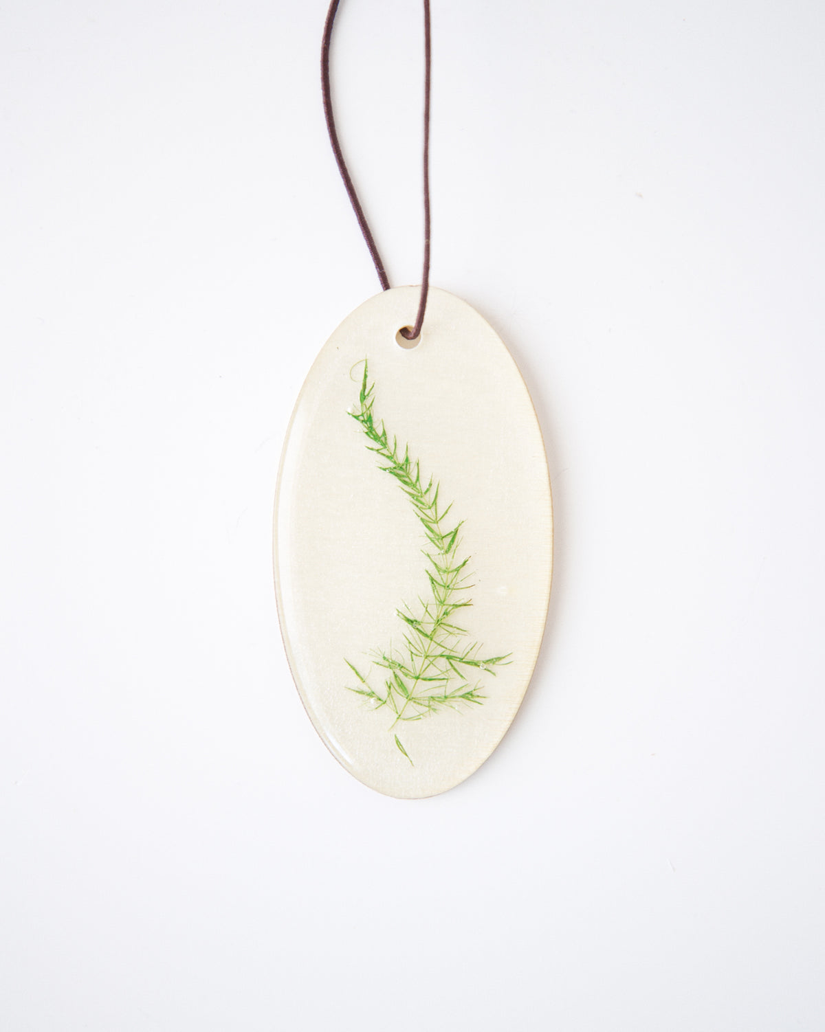 """The Fern"" Oblong Keepsake Ornament"
