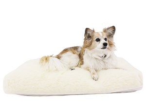 Roan Natural Latex Pet Bed – Solid Fill