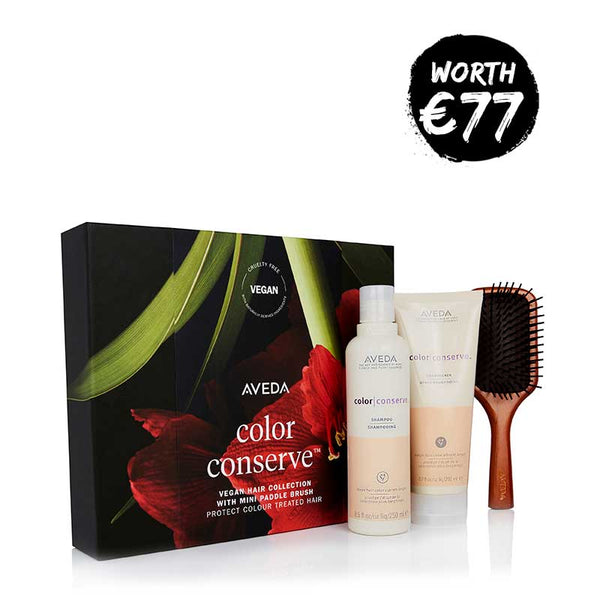 Aveda Color Conserve Gift Set