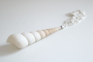 Sea Snail necklace. Sterling silver necklace with a natural Sea Snail.