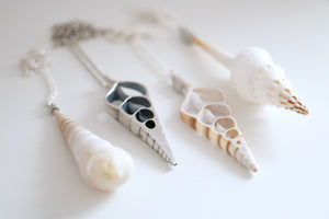 Sea Snail necklace. Sterling silver pendant with a natural Sea Snail.