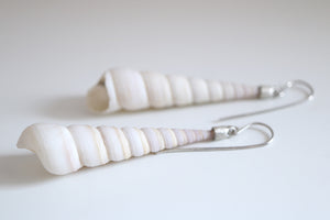 Sea Snail earrings. Sterling silver dangles with natural Sea snails.