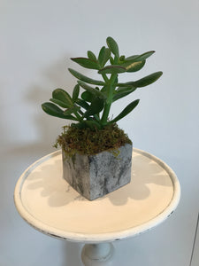 Small Square Concrete Pot with Diamond Dust
