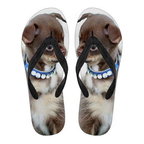 Chihuahua Puppy Flip Flops For Men-Free Shipping Limited Edition-Paww-Printz-Merchandise