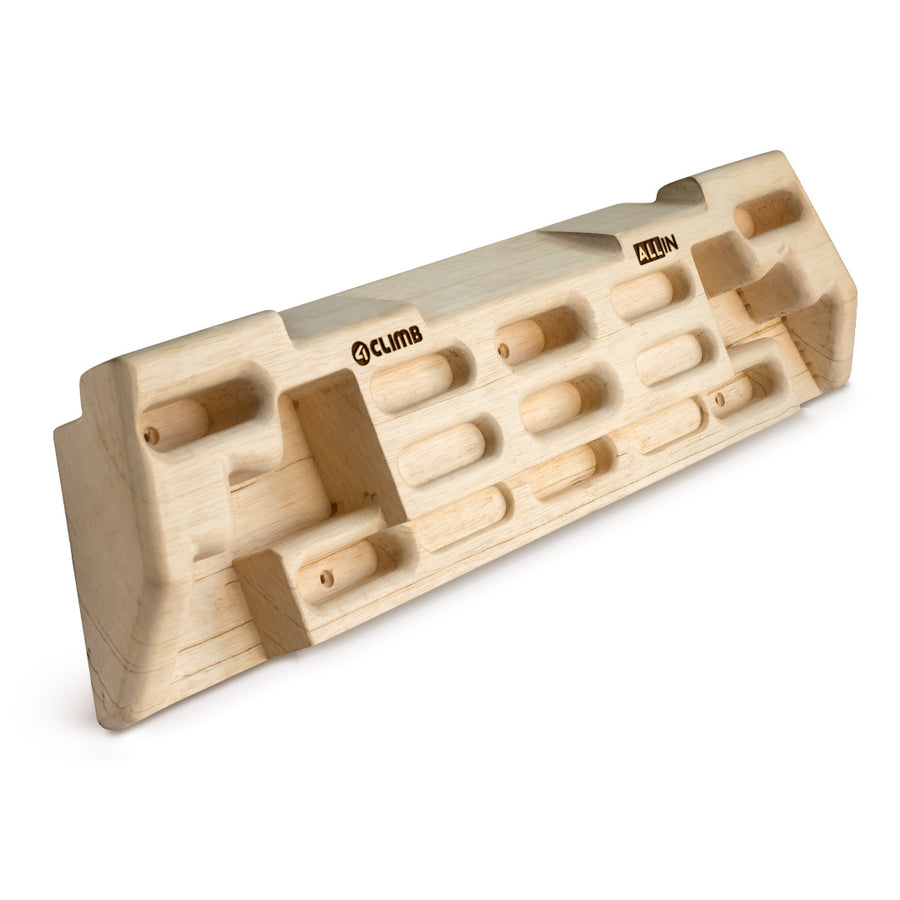 Fingerboard ALL-IN