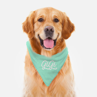 Mint Pet Bandana