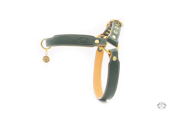 Cypress Green Leather Dog Harness
