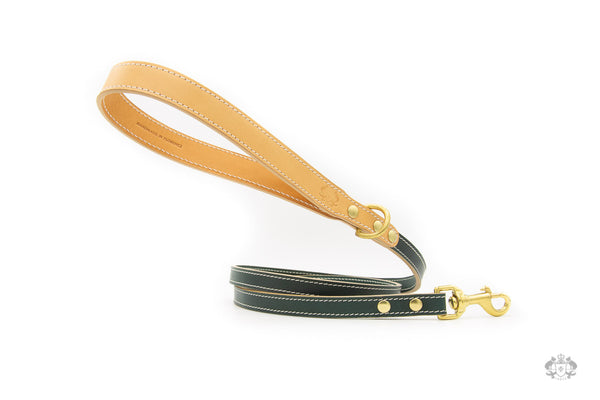 Cypress Green Leather Dog Leash front view