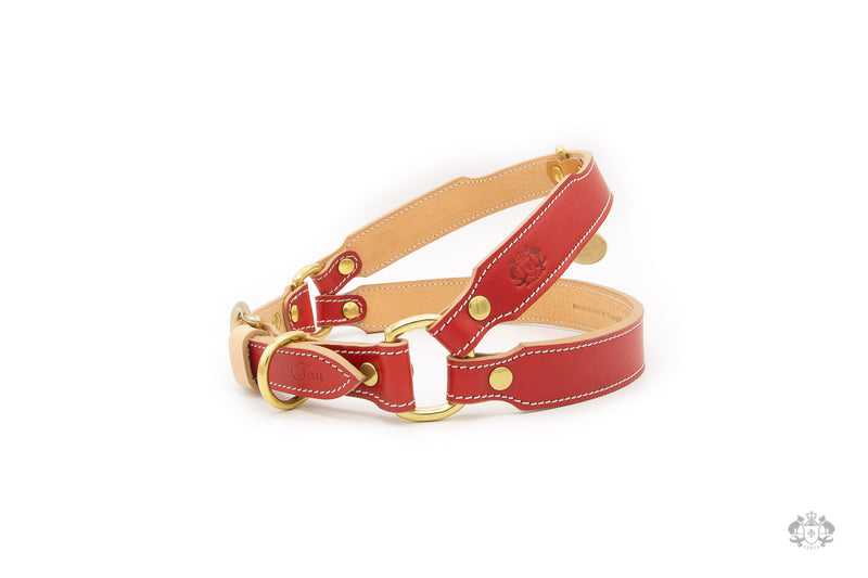 Poppy Red Leather Dog Harness