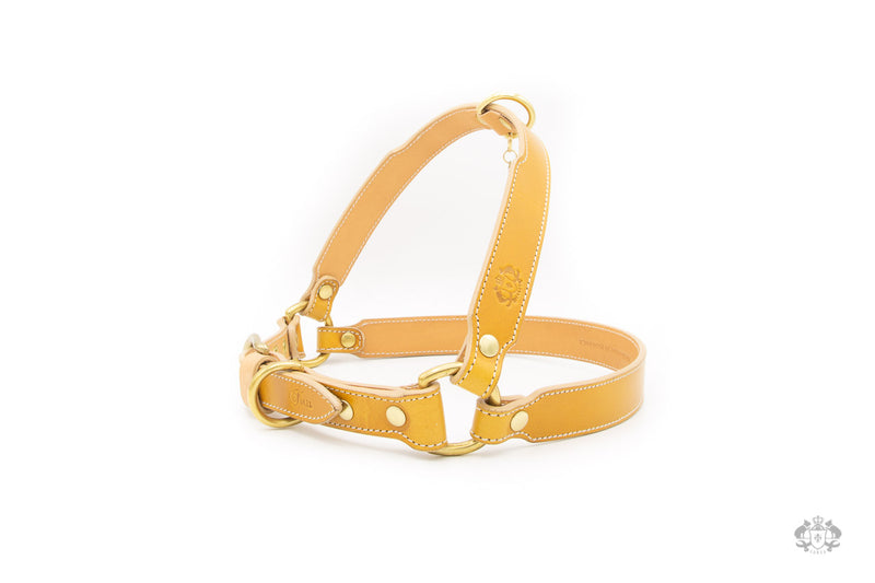 Sunflower Yellow Leather Dog Harness