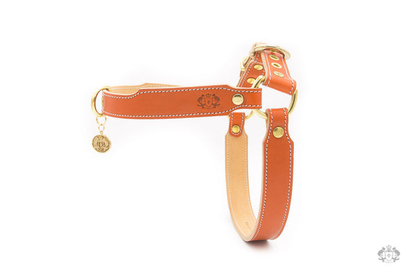 Sunset Orange Leather Dog Harness