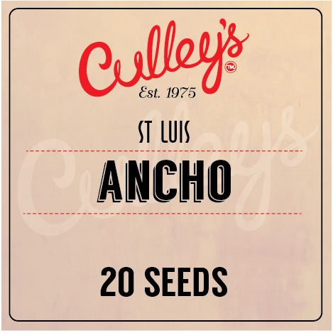 Ancho St Luis Chilli Seeds